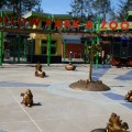 The Country's First Green Zoo