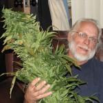 Medical marijuana activist Roger Mentch has spent five moths in jail.