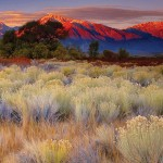 Galen Rowell's best Sierra Nevada photographs are collected in a new Sierra Club book.
