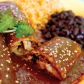 The mole is great at Tu Mero Mole.