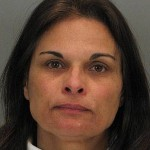 Micheline Johnson allegedly stole $500,000 by taking the credit card info of travelers at Mineta San Jose International Airport.