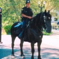 A fundraiser is being planned to save the San Jose Mounted Unit through 2012.