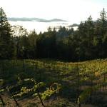 Food & Wine Events: April 6-13