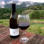Food & Wine Events: April 13-20