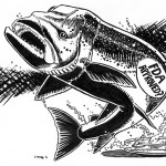 Growth hormones make the 'AquAdvantage' salmon mature twice as fast as a normal fish,which could mean more food for humans, or doom for the bio-engineered creature's native cousins.