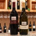 Food & Wine Events: June 15-22