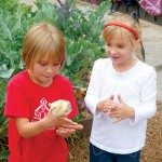Two youngsters at WISH charter school get friendly with a resident chick.