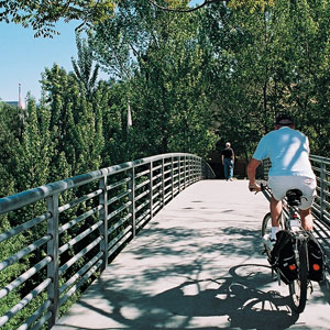 Corridors: Exploring the Urban Woodland