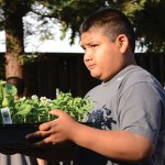 With few healthy food options in some San Jose neighborhoods, residents are taking matters into their own hands with a private gardening program, La Mesa Verde, out of Sacred Heart Community Service. (Photo courtesy of Sacred Heart Community Service)
