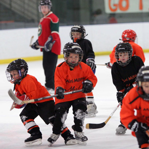 Amateur Hockey Thrives in San Jose