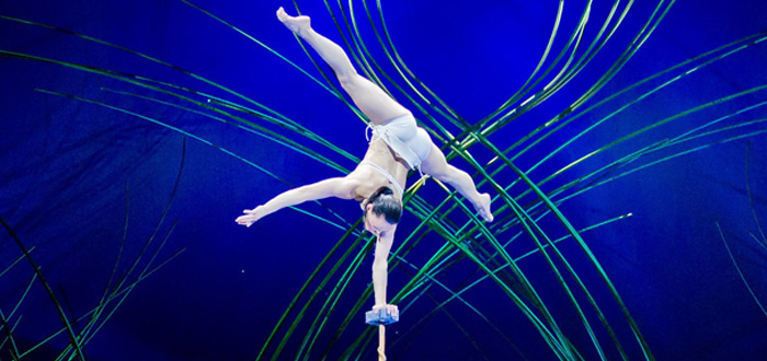 Cirque du Soleil Returns With Amaluna