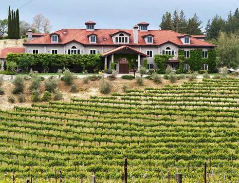 Byington Winery Vineyard