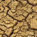 california-drought-efm