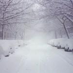 california-snow