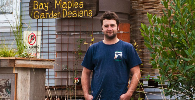 Drought Landscaping Tips From Bay Maples