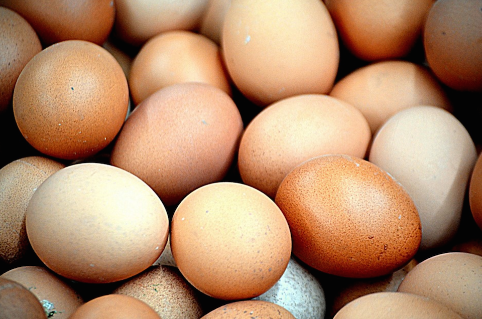 Cracking a Few Eggs: A Guide to Making Eggs Every Which Way