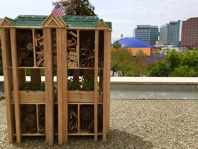 SJ Fairmont Creates Mini-Hotel for Bees