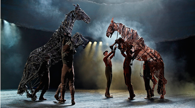 War Horse Fights the Battle on the Big Screen