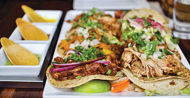 Tacolicious: Humble Roots Lead to Delicious Results