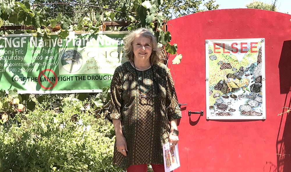 SJQ&A: Alrie Middlebrook, Founder of Middlebrook Gardens