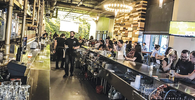 Steins Breathes New Life into Cupertino Bar Scene