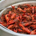 Chowing down on a cauldron of crawfish is a fantastic way to spend the afternoon.