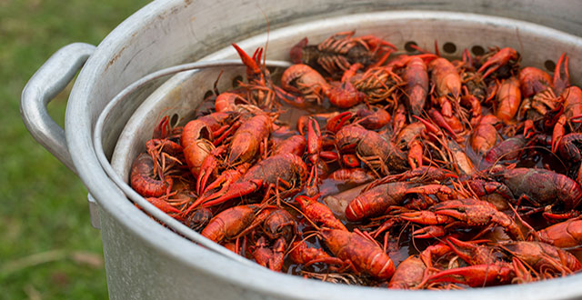Summer Boil Cooking Up Crawfish Sanjose Com