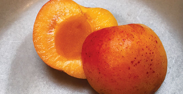 This 4th of July, Celebrate with Apricots—the Santa Clara Valley's original export